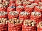 Ankara Polatlı'da 200 bin ton soğanın depolandığı tespit edildi