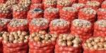 Ankara Polatlıda 200 bin ton soğanın depolandığı tespit edildi