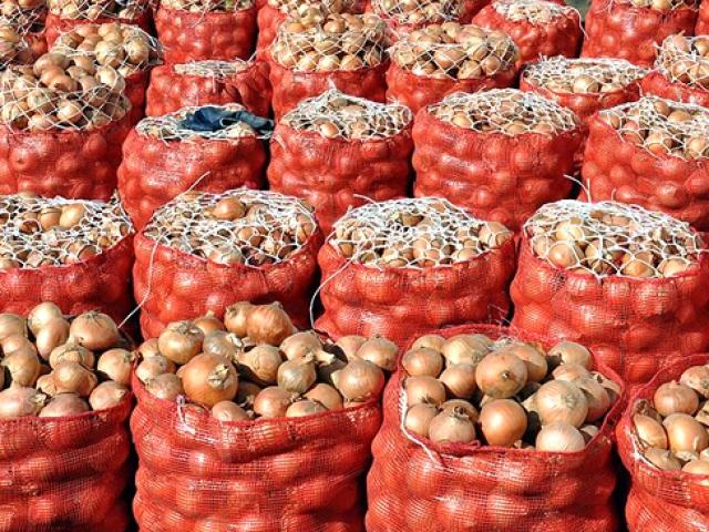 Ankara Polatlıda 200 bin ton soğanın stoklandığı tespit edildi