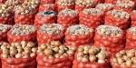 Tarım Bakanlığından 45 soğan deposuna denetim