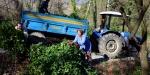Orman köylüsüne 2,1 milyar liralık destek verildi