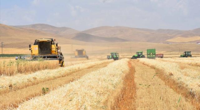 300 ova tarımsal sit alanıyla koruma altına alınacak