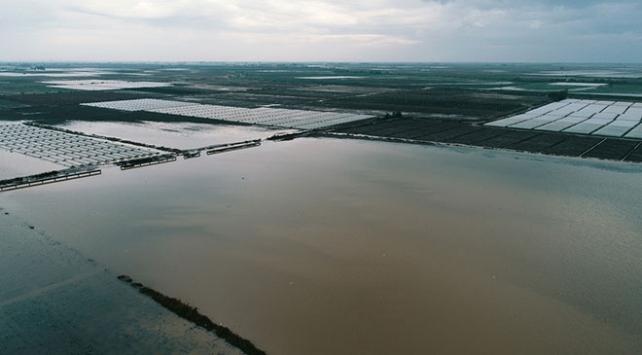 Mersinde sağanak tarım alanlarına zarar verdi