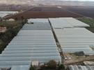 Şanlıurfa'ya 100 milyon dolarlık sera yatırımı