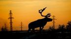 Rusyanın Yamal-Nenets Özerk Bölgesine bağlı Salekhard kenti