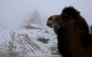 Kapadokyada sis ve kar güzelliği