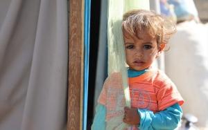 Yemenin Marib vilayetinin nüfusu göçlerle 10 katına çıktı