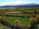 Yeni eylem planından tarım ve ormancılığa destek çıktı