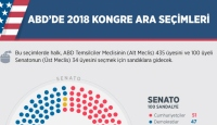 ABD'de 2018 kongre ara seçimleri