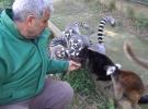 Başbakıcı Abdullah Ege hayvanları özenle besliyor