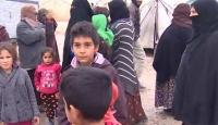 Terör örgütünden kaçan Ayn el Araplıların tek umudu Fırat'ın doğusuna düzenlenecek operasyon