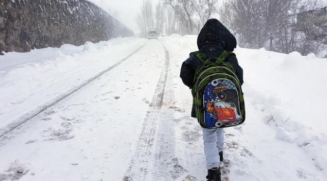 Vanda iki ilçede okullara kar tatili