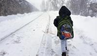 Van'da iki ilçede okullara kar tatili