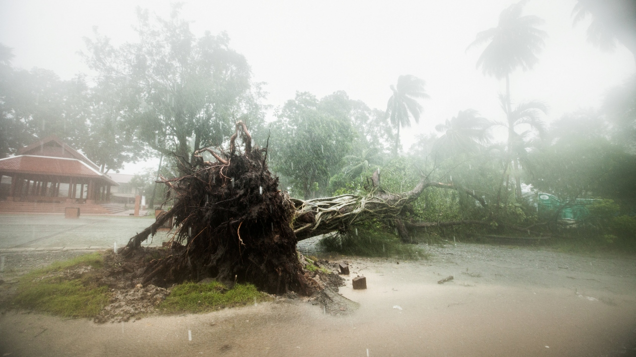Pabuk fırtınası Taylandı vurmaya başladı