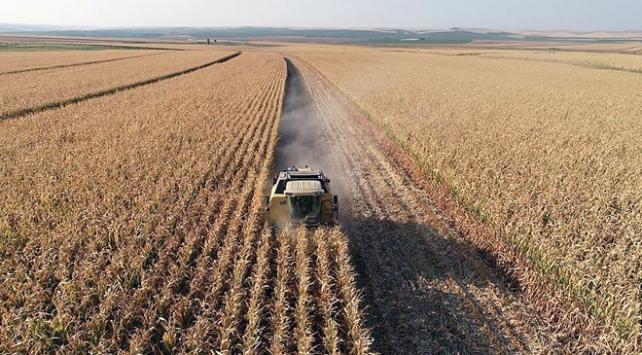Tarımsal destekler ihracat rakamlarına yansıdı