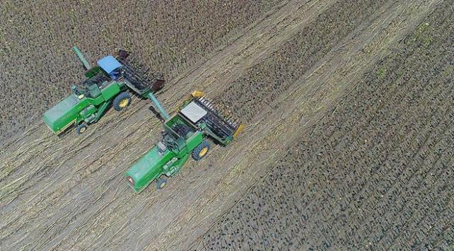 Tarım ilaçlarında yüzde 15 indirime gidiliyor