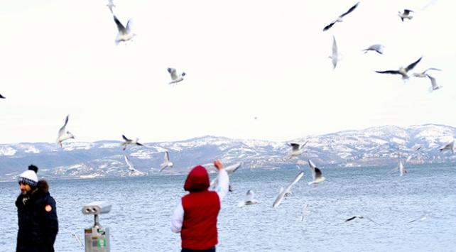 Doğu Marmaranın turizm gözdesi Sapanca tatilcileri bekliyor